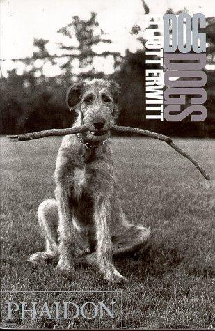 Dog Dogs by Elliott Erwitt
