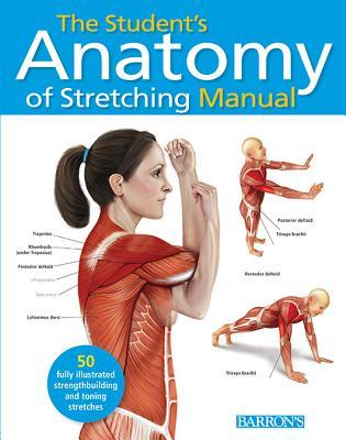 The Anatomy of Stretching: 50 Exercises to Avoid Injury, Relieve ...