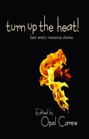 Turn Up the Heat: Best Erotic Romance Novellas