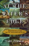 At the Water's Edge: Macroevolution and the Transformation of Life