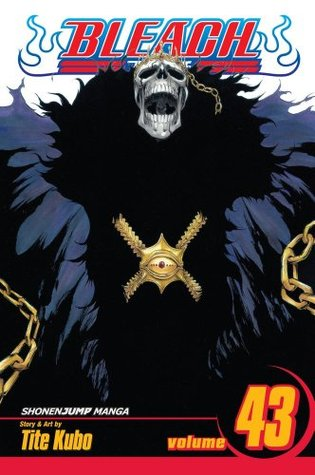 Bleach, Volume 43 by Tite Kubo