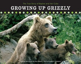 growing-up-grizzly-the-true-story-of-baylee-and-her-cubs