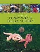 Encyclopedia of tidepools & rocky shores by Mark W. Denny