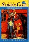 Horse Trouble (Saddle Club, #23)