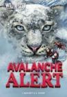 Avalanche Alert by Jan Burchett