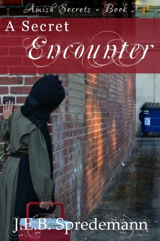 A Secret Encounter (Amish Secrets #2)