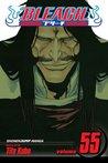 Bleach, Volume 55 by Tite Kubo