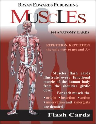The Muscles (Flash Cards)