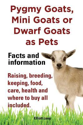 pygmy-goats-as-pets-pygmy-goats-mini-goats-or-dwarf-goats-facts-and-information-raising-breeding-keeping-milking-food-care-health-and-where