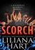 Scorch (The MacKenzie Family, #11) by Liliana Hart