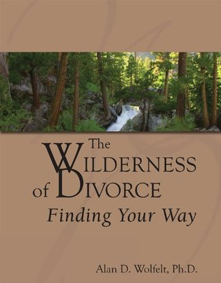 The Wilderness of Divorce: Finding Your Way (Transcending Divorce)