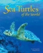 Buenos libros para descargar Sea Turtles of the World