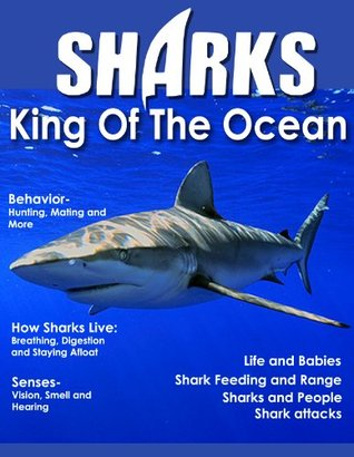 Sharks - King Of The Ocean