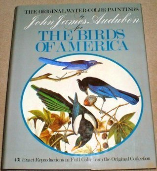 Original Water-Color Paintings by John James Audubon for The Birds Of America