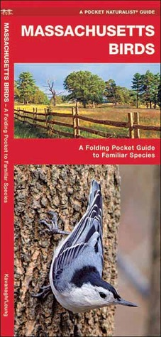 Massachusetts Birds: A Folding Pocket Guide to Familiar Species