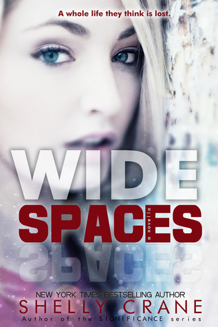Wide Spaces (Wide Awake, #1.5)