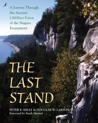 The Last Stand by Peter E. Kelly