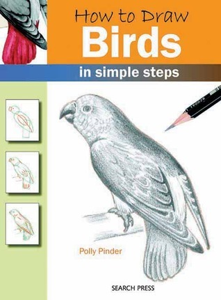 How to Draw Birds: in simple steps