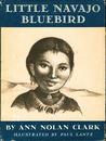 Little Navajo Bluebird