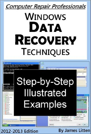 Windows Data Recovery Techniques