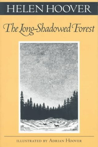 Long-Shadowed Forest