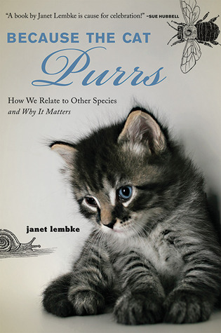 Because the Cat Purrs by Janet Lembke
