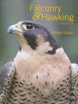 Falconry  Hawking by Phillip Glasier