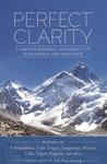 Perfect Clarity by Marcia Binder Schmidt
