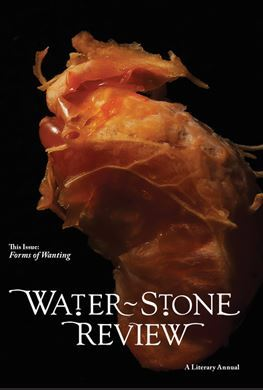 Water~Stone Review, Volume 16, Forms of Wanting