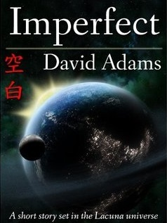 Imperfect by David  Adams