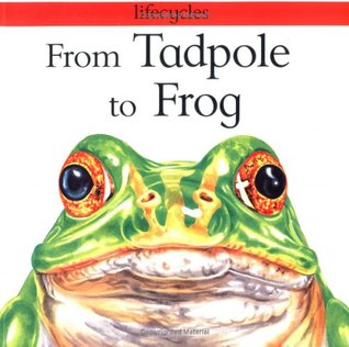 from-tadpole-to-frog