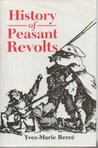 History of Peasant Revolts: The Social Origins of Rebellion in Early Modern France