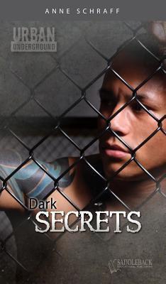 dark secrets schraff anne