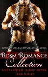 BDSM Romance Collection (BDSM Romance. Billionaire Doms. BDSM Fantasies. Bad Boys.)