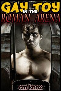 gay-toy-in-the-roman-arena