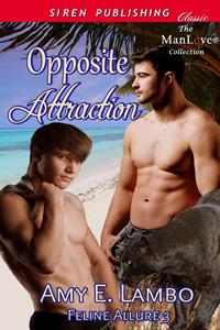 opposite-attraction