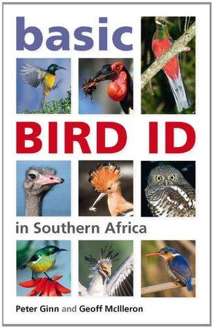 basic-bird-id-in-southern-africa