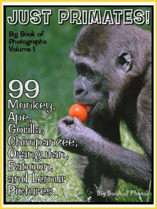 99 Pictures: Just Primate Photos! Big Book of Monkey, Ape, Gorilla, Chimpanzee, Orangutan, Baboon, and Lemur Photographs, Vol. 1
