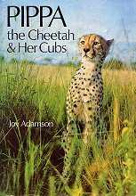 Pippa, The Cheetah, And Her Cubs by Joy Adamson