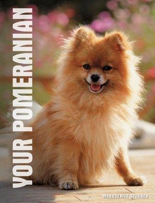 Your Pomeranian