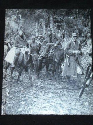 Partisans and Guerillas