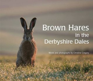 brown-hares-in-the-derbyshire-dales