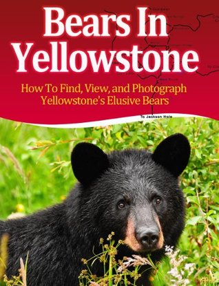 Bears In Yellowstone -- How to Find, View, and Photograph Yellowstone's Bears -- Limited Edition