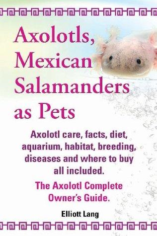 Axolotls, Mexican Salamanders as Pets. A...