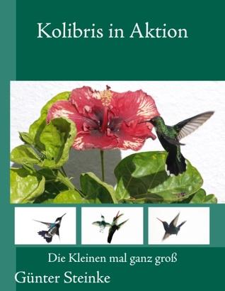 Kolibris in Aktion