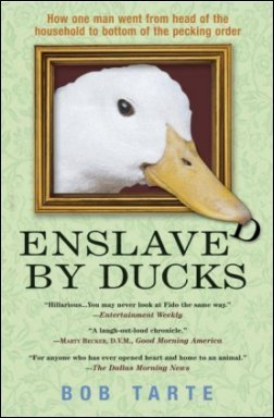 Enslaved by Ducks