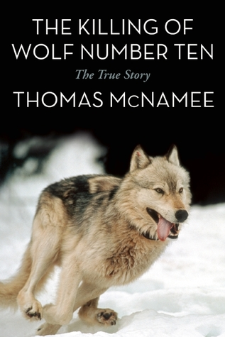 the-killing-of-wolf-number-ten-the-true-story