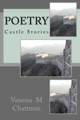Castle Stories (Poetry, #3)