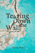 Tearing Down the Wall by Tracey  Ward