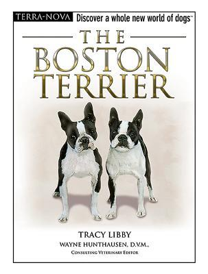 The Boston Terrier by Tracy Libby